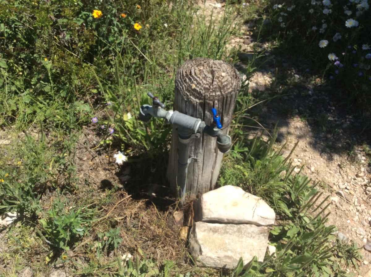 A shared water spigot near Campsite 9.