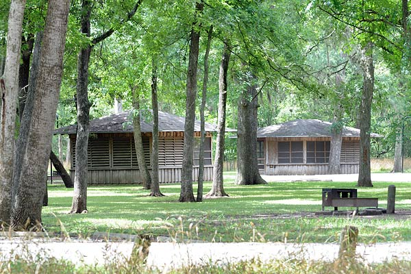 Stephen F Austin State Park Screened Shelters Texas