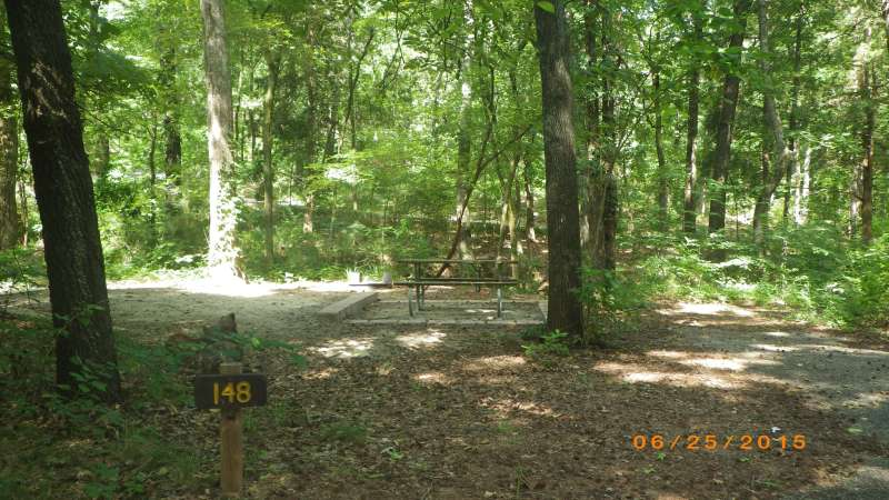Basic Campsite #142 in the Sumac Bend area.