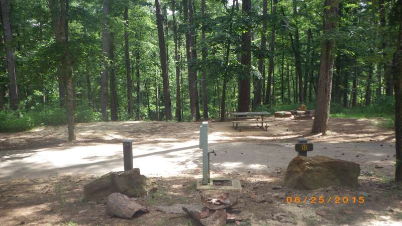 Tyler State Park Campsites With Electric Amp Water Hookups