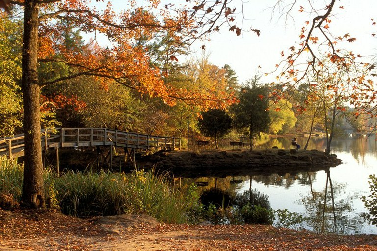 Fall scene by the lake.