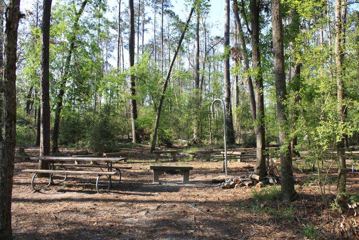 Group Camp Area.
