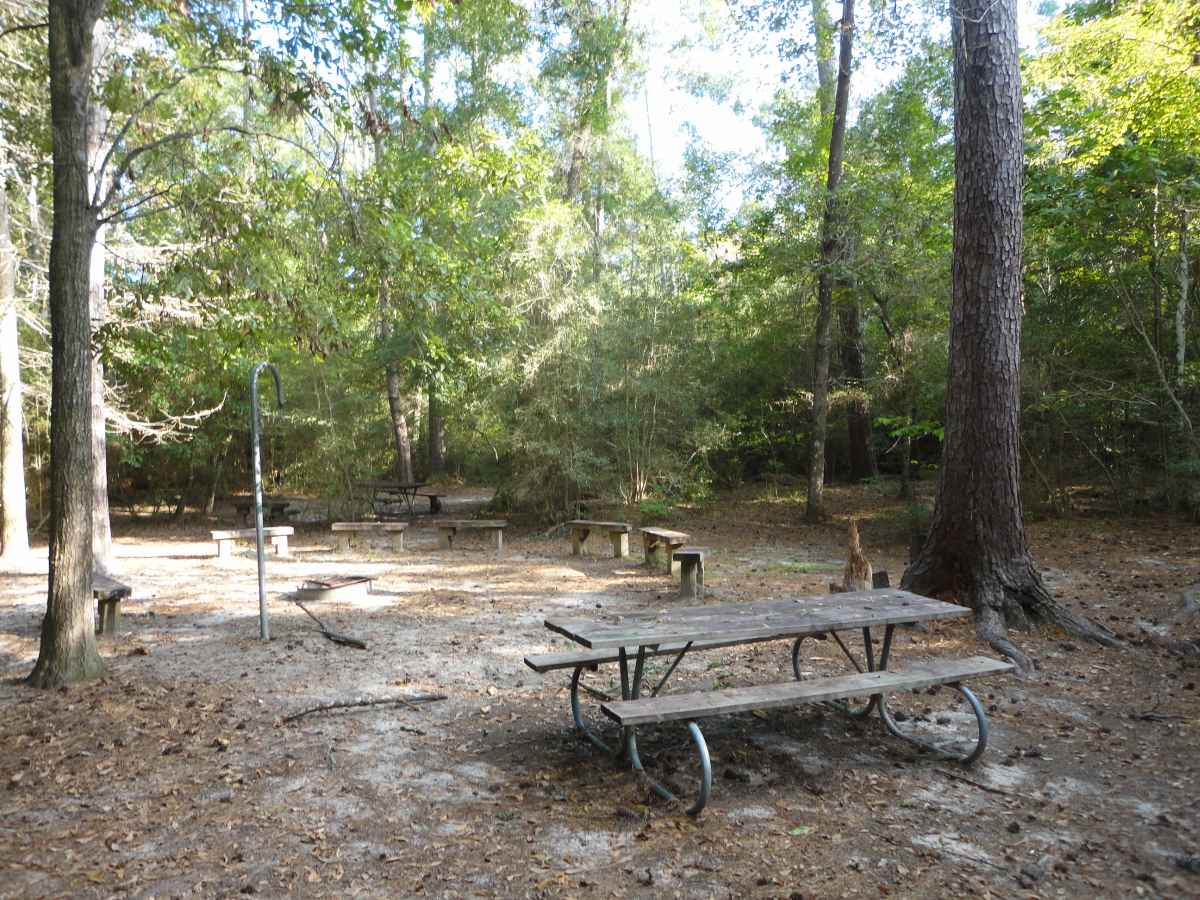 Group Walk-in Camping Area.