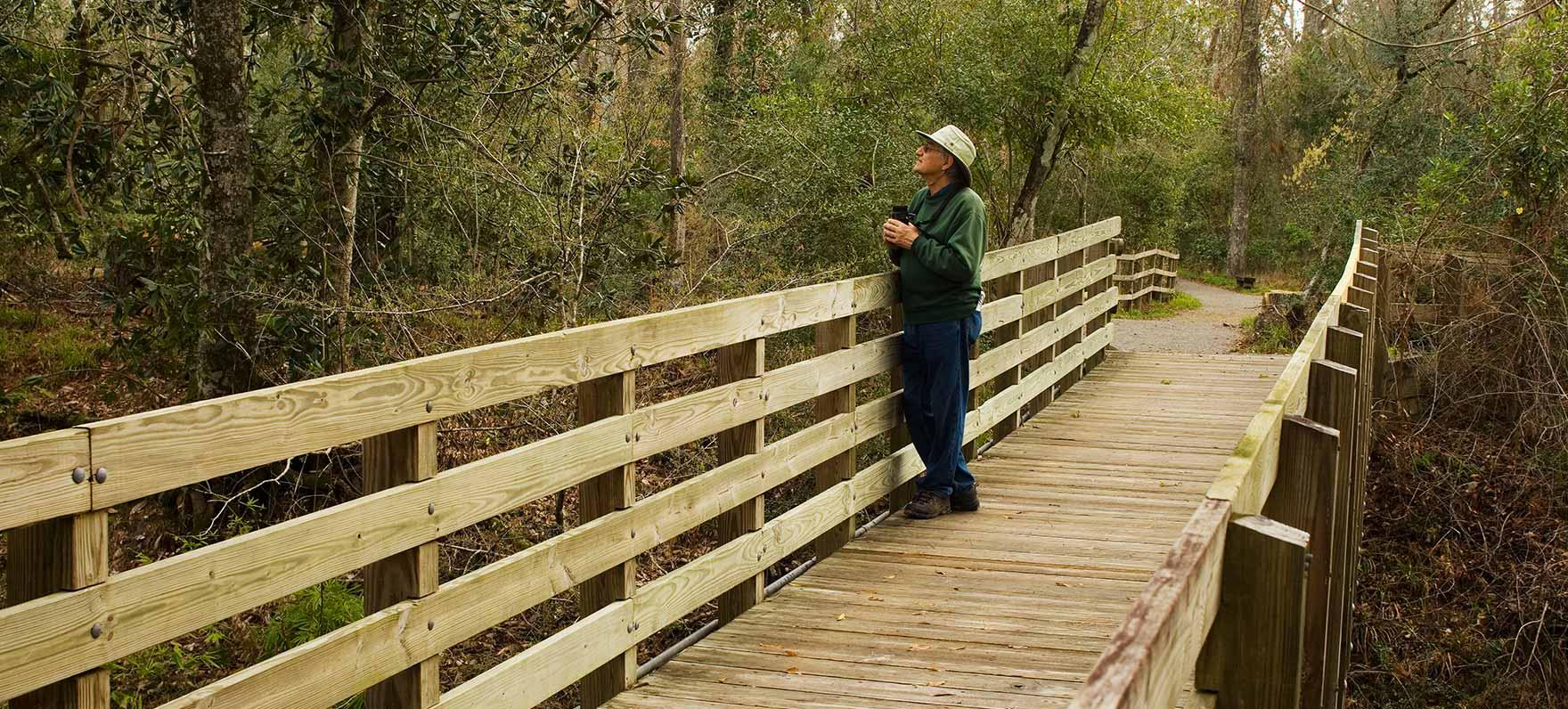 Village Creek State Park — Texas Parks & Wildlife Department