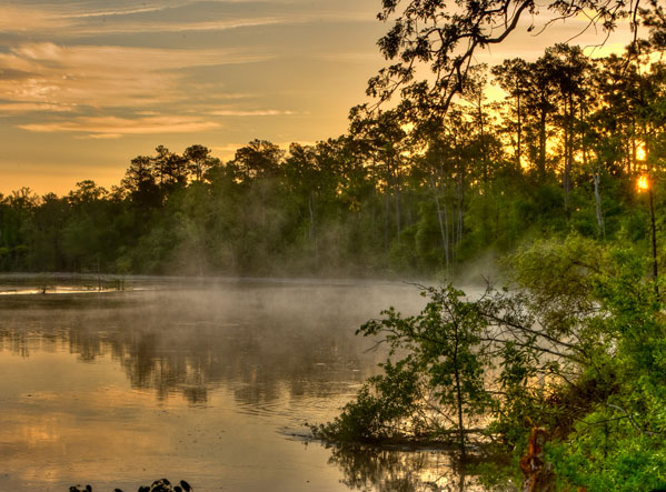 Mist rising over the water