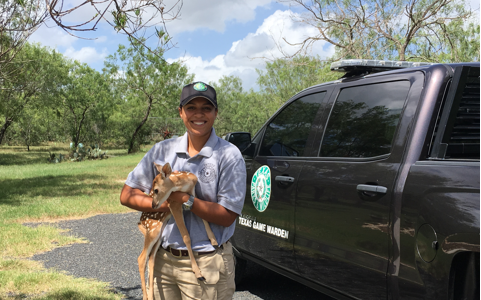 Game Warden Intern holding a Fawn