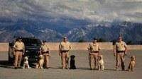 K-9 Team in Utah